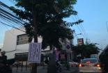 ทางซ้ายมือจะพบกับทางเข้าที่จอดรถ The Mall หัวหมาก และธนาคารพาณิชย์ที่จะอยู่ติดกับ The Tree หัวหมากเลยครับ